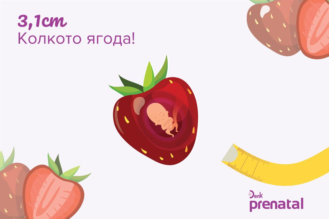 Вашето бебе - г.с. 10