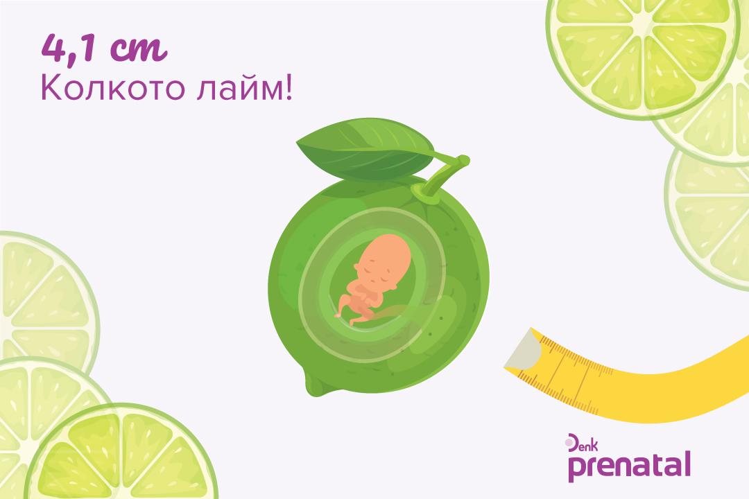 Вашето бебе - г.с. 11