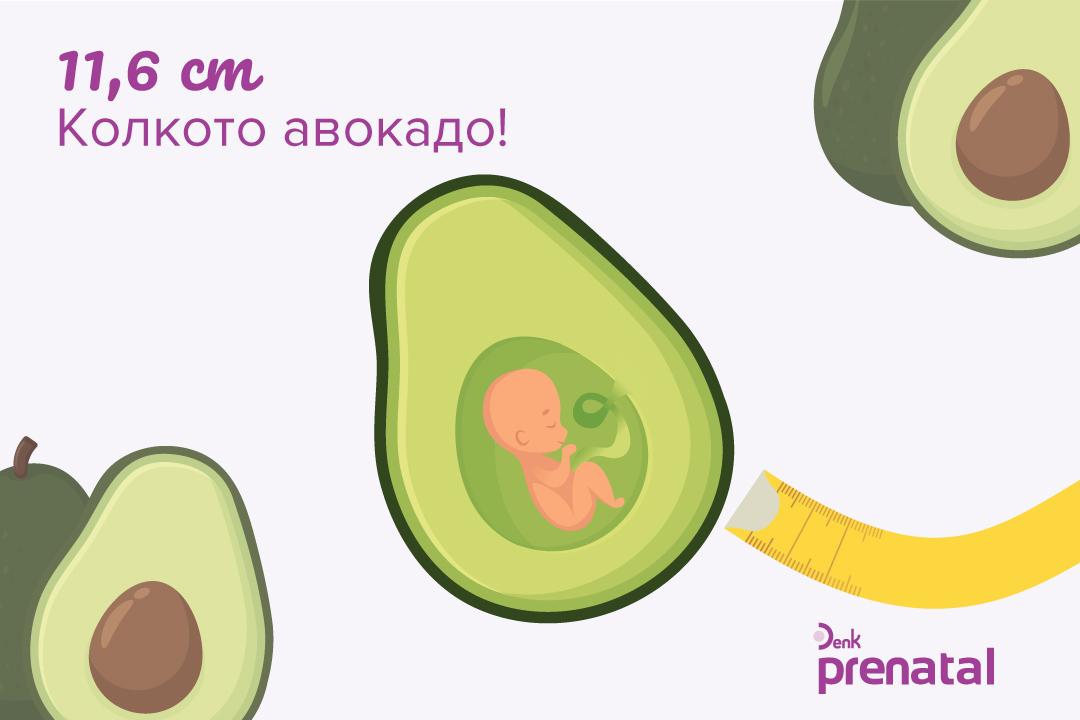 Вашето бебе - г.с. 16