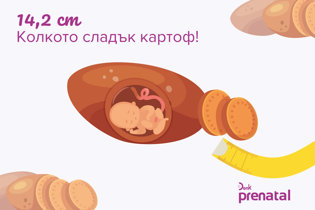 Вашето бебе - г.с. 18