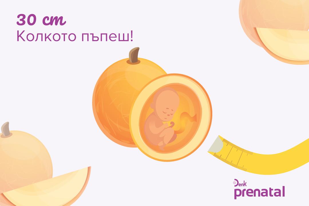 Вашето бебе - г.с. 24