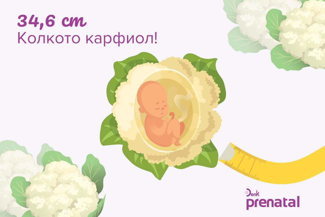 Вашето бебе - г.с. 25