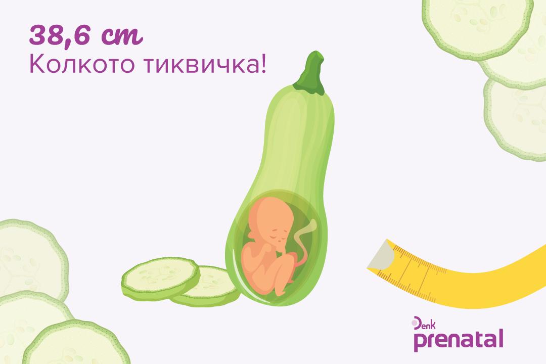 Вашето бебе - г.с. 29