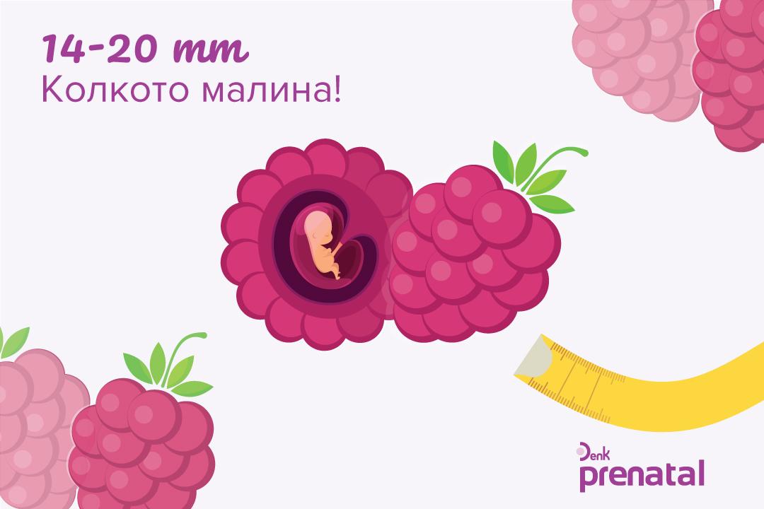 Вашето бебе - г.с. 8